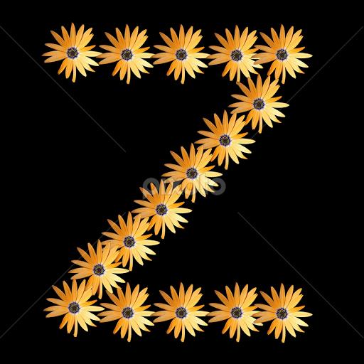 the elglish alphabet z words typography pixoto