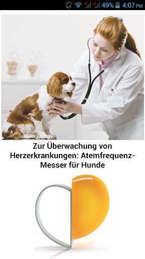 Atemfrequenz-Messer für Hunde