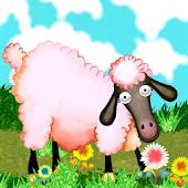Black Sheep, Read & Play