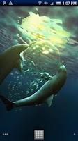 Screenshot of Dolphin Moonlight Trial