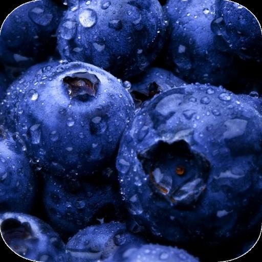 Delicious Berries HD wallpaper LOGO-APP點子