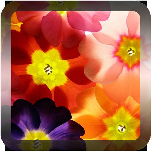 童話夢幻花朵壁纸 個人化 App LOGO-APP試玩