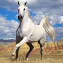 Horses Jigsaw Puzzle logo