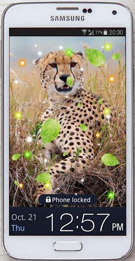 Gepard Racing live Wallpaper