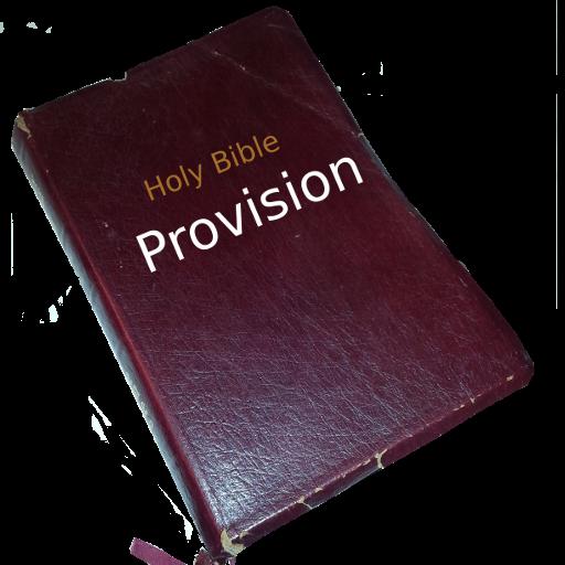 Provision Scriptures