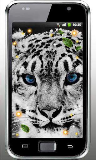 Snow Leopard live wallpaper