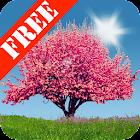 Spring Trees Free icon