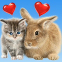 Cat and Bunny. Cute Wallpaper. icon