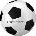 Fussball-Harz icon
