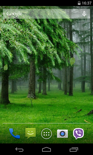 Green Fores Live Wallpaper