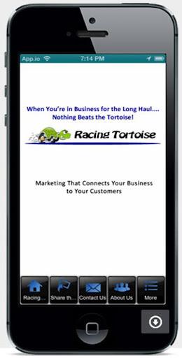 Racing Tortoise