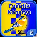 Fanatik Kanarya
