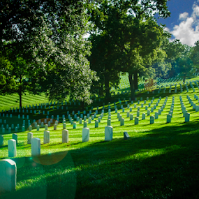 National Cemetery by Dave Clark - City,  Street & Park  Cemeteries ( honor, national, cemetery, service, landscape, kansas,  )