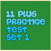 11+ practice test Set 1