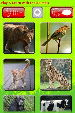 Play & Learn: Animals - screenshot