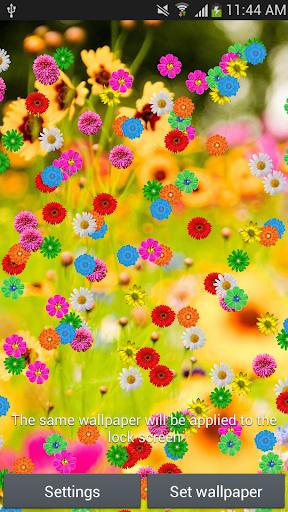 玩個人化App|春天的花朵动态壁纸免費|APP試玩