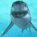 Shark in the Ocean Live Wallpa icon