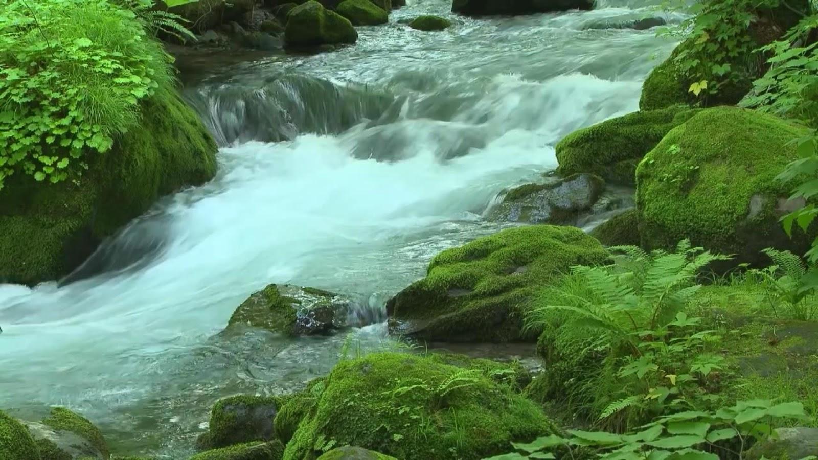 Flowing water casino 16
