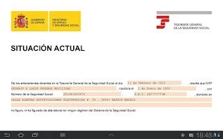 Screenshot of Seg-Social Informe Situación