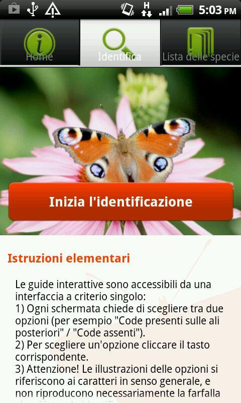 Farfalle Foreste Casentinesi- screenshot
