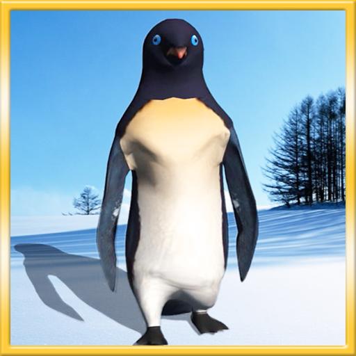 Funny Penguin Live Wallpaper