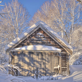 An old garage with new snow by David Stone - Buildings & Architecture Decaying & Abandoned ( blue sky, snow, weathered wood, trees, old wood garage, snow on trees, sun on snow, , winter, cold )