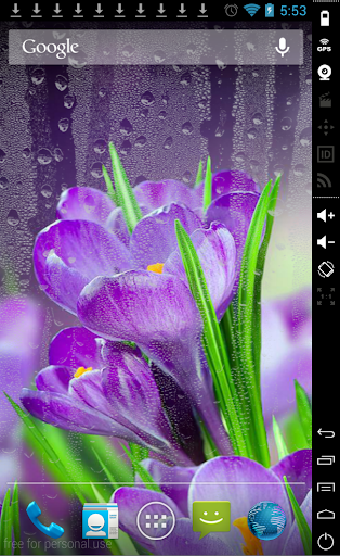 Flowers in Rain LiveWallpaper