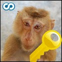 Name That Monkey Key