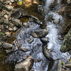 A gentle stream by Arun Prasanna - Nature Up Close Rock & Stone ( #natural pool #zen #dry leaves #pebbles #pool )
