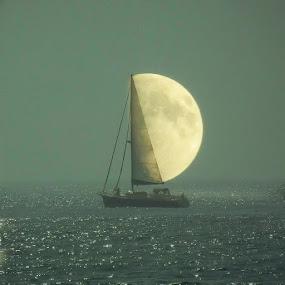Sailor Moon by Sheila Marques - Digital Art Places ( #moonedit, #sailormoon, #moon, #perfectmoon,  )