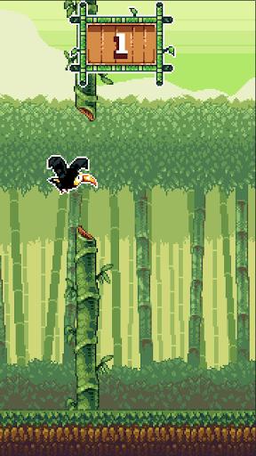Toucan Dan:Bamboo Adventures
