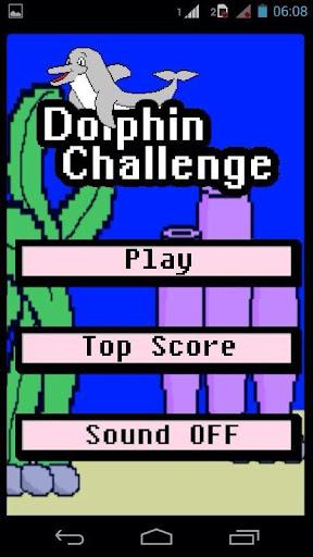 Dolphin Challenge