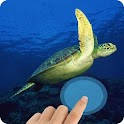 Turtles WaterTouch icon