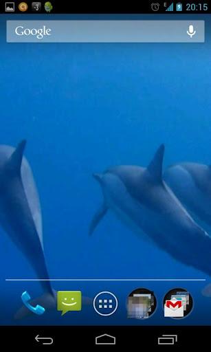 イルカの3D。壁紙を生きる。