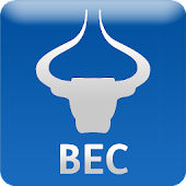BEC Currency Converter