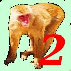 Monkey Hunt2 icon
