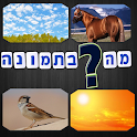 מה בתמונה icon