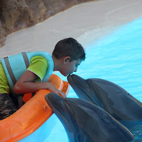 Kissing dolphins by Kirsten Gamby - Babies & Children Children Candids ( dolphin, dolphin and child, kissing dolphin, , improving mood, moods, red, love, the mood factory, inspirational, passion, passionate, enthusiasm )