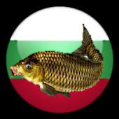 РибиБГ (FishBG)