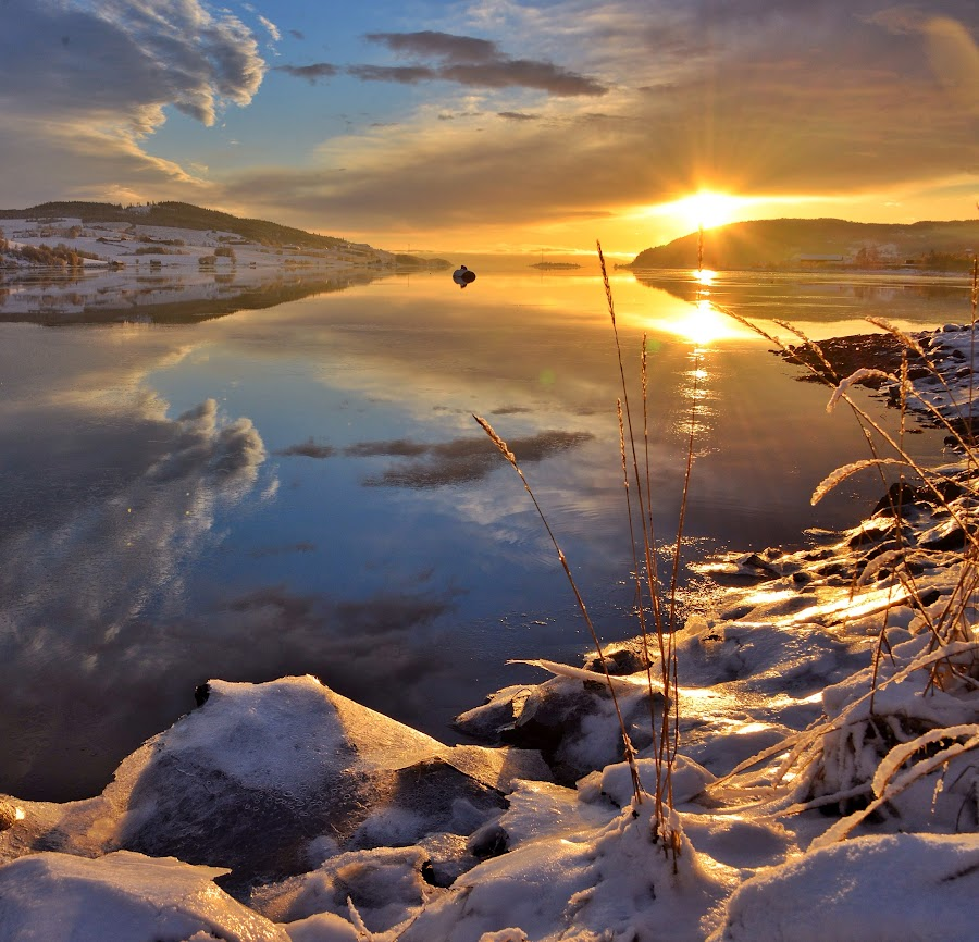 Cold sunset by Hilde Lorgen - Landscapes Waterscapes ( reflection, winter, sky, sunset, sea )