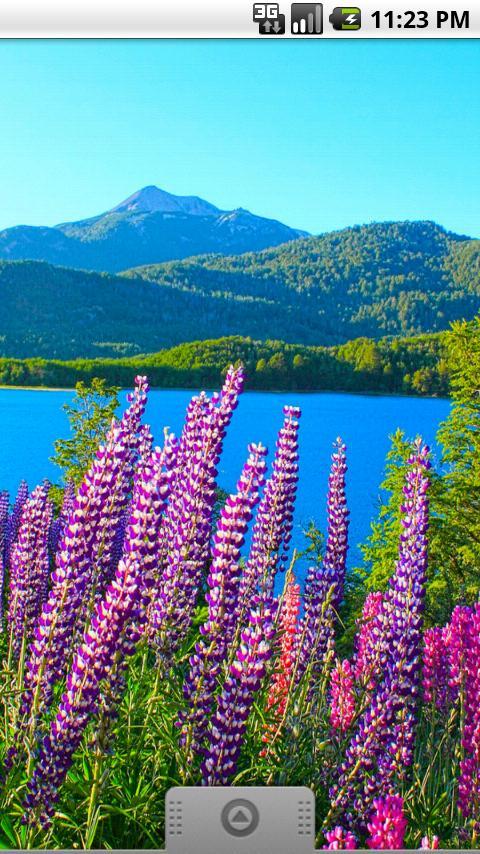 Patagonia Live Wallpaper- screenshot