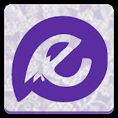 Vera Purple Paisley-Evovle NH