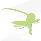 pfingoTalk icon