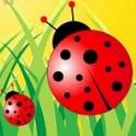 Plants vs Bugs icon
