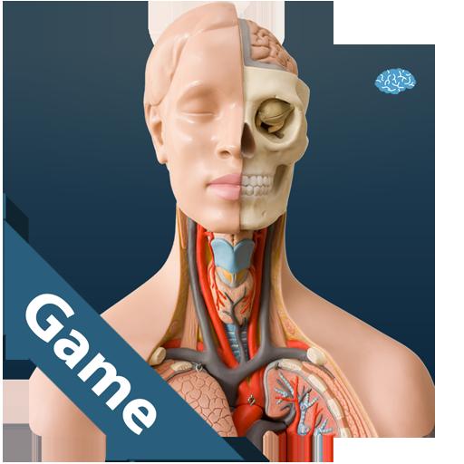 解剖遊戲 解謎 App LOGO-APP試玩
