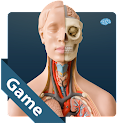 Anatomy Game Anatomicus