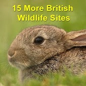 15 More British Wildlife Sites