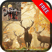 Deer Skill Hunter 2014