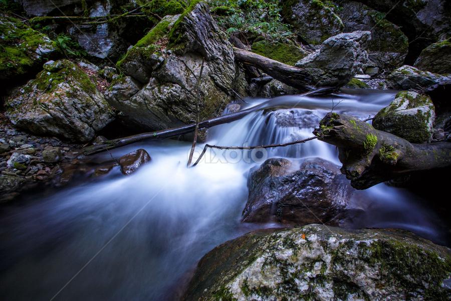 Creek Jasle - Zeleni vir by Stanislav Horacek - Landscapes Waterscapes