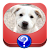 Dog Breeds Quiz file APK Free for PC, smart TV Download